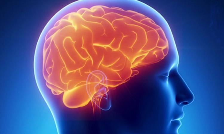Израильские медики определяют риск развития инсульта по ушам пациента