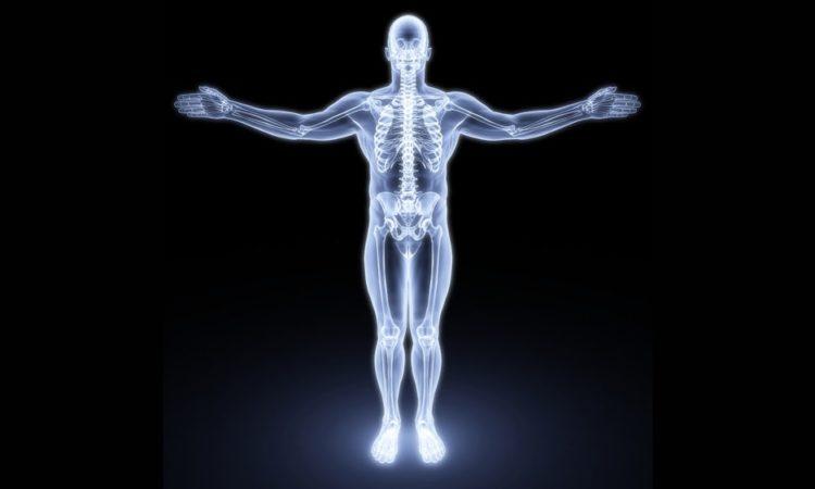 Рак кости лечение в Израиле