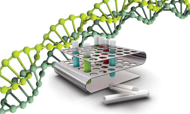 Исследование ДНК позволит эффективно устанавливать рак на ранних стадиях